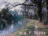 Basingstoke Canal, photo © E.P.Tozer
