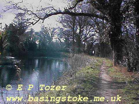 The Basingstoke Canal, image © E.P.Tozer